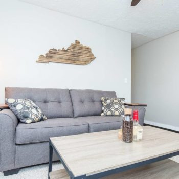 Family room with couch and coffee table