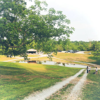 First Weekend at West Sixth Farm